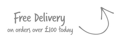 Free Delivery on this product today