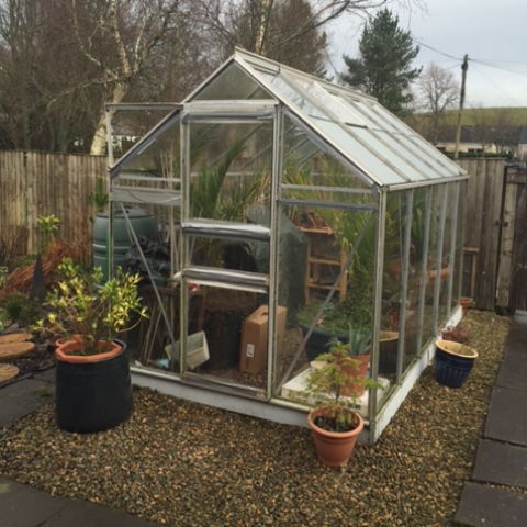 Greenhouse Glazing