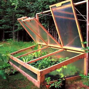 Cold frame glazing