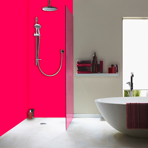 2 Panel Coloured Shower Kit image