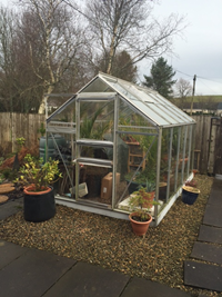 Greenhouse repaired with clear unbreakable polycarbonate